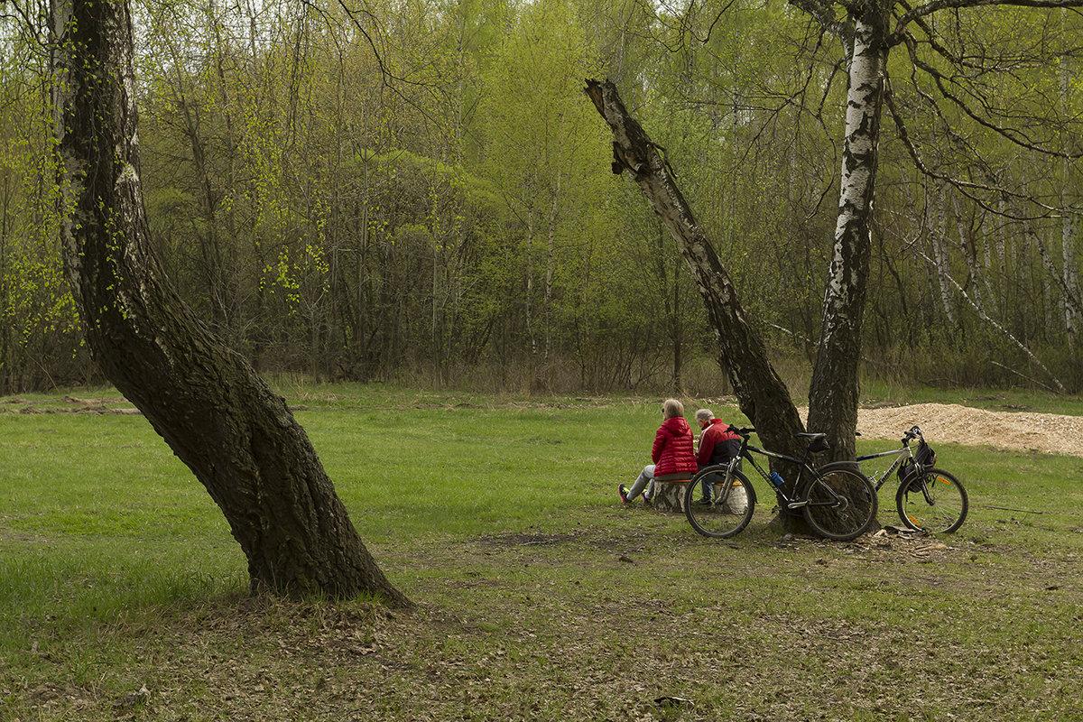 Весна в парке - Владимир Иванов