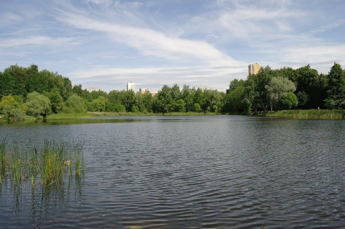 Русский пейзаж - megaden774