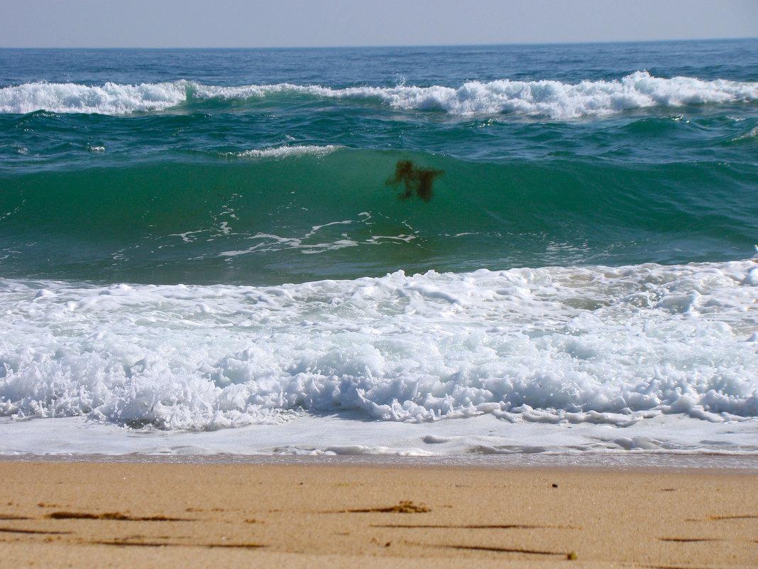 Морские привидения... - Арина