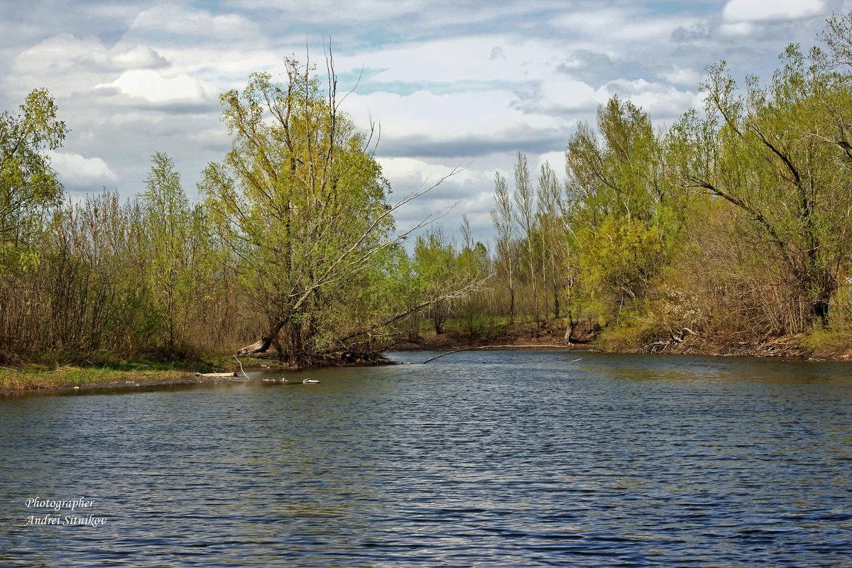 Пруд весной - Андрей Ситников