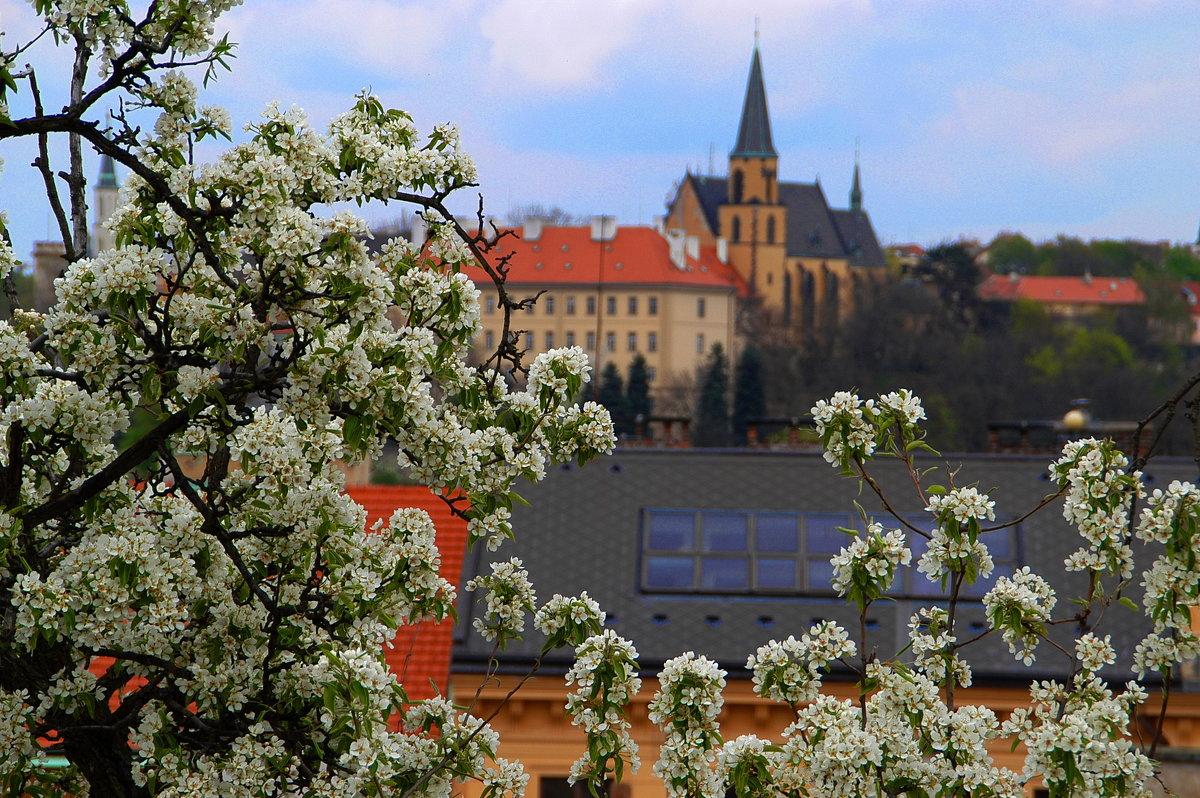 Прага - ФОТО ОХОТНИК