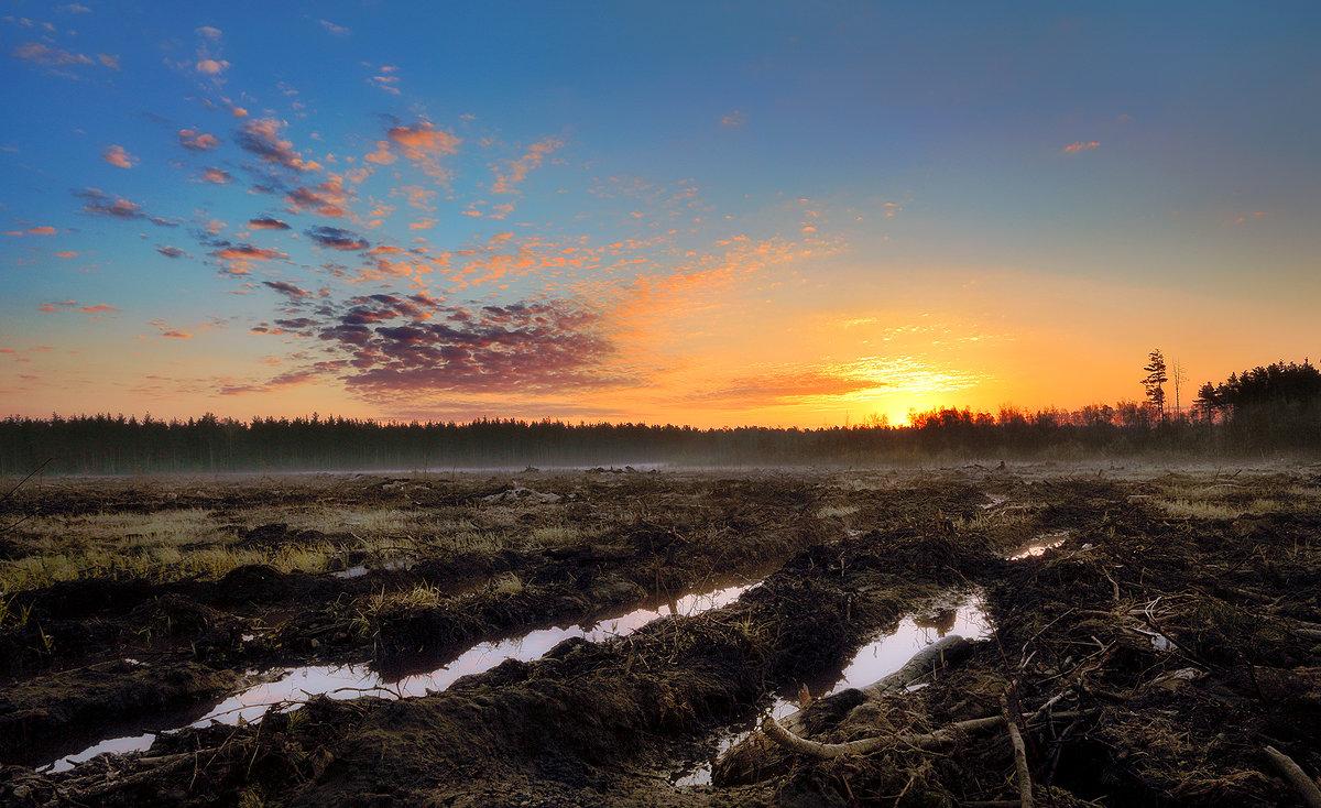 Рассвет прошедшего апреля.... - Андрей Войцехов