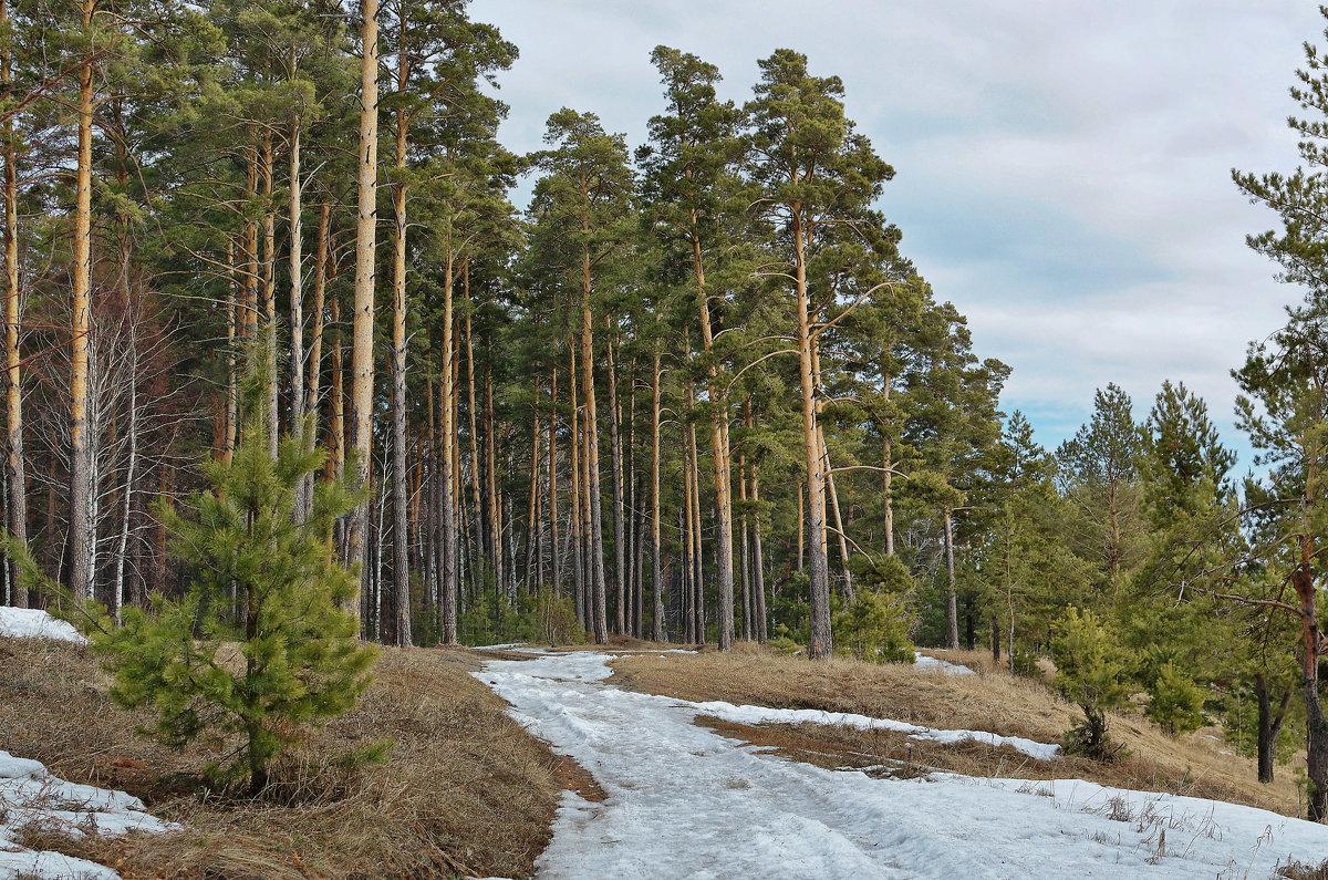 Остатки снега - Дмитрий Конев