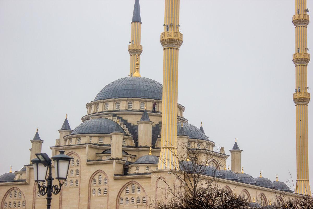 IMG_1085 Грозный, мечеть - Олег Петрушин