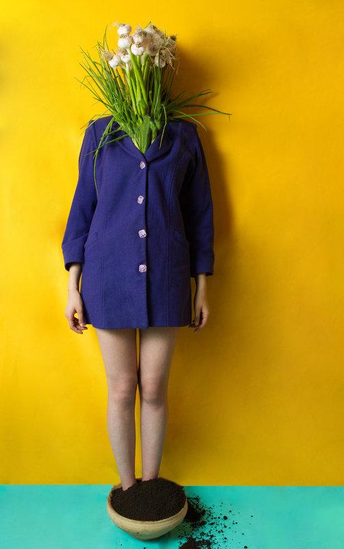 Vegan series - Karen Khachaturov