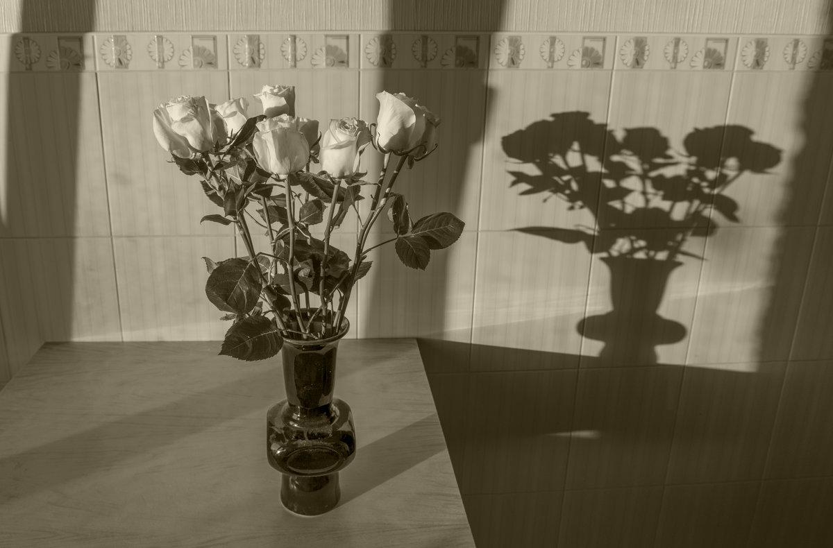 Иные розы - Павел Самарович