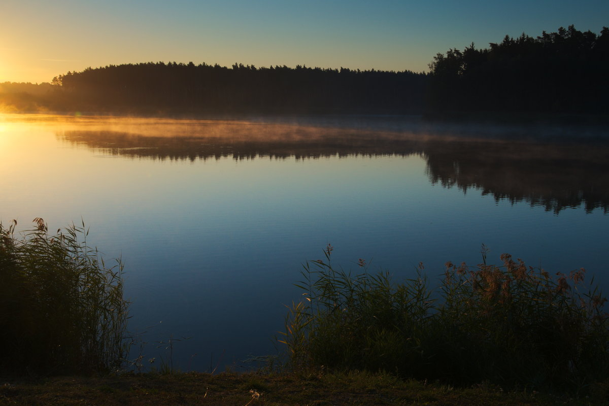 Sunrise 6 - Виктор