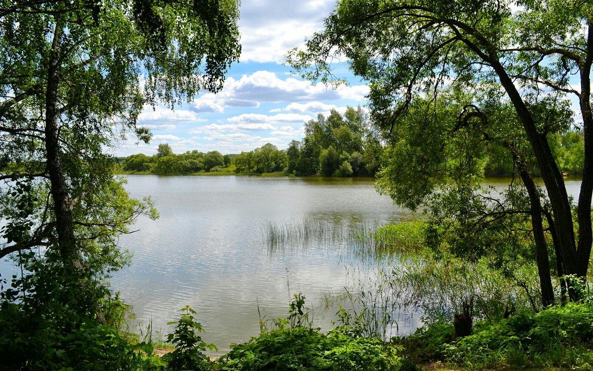 На озере в июне - Милешкин Владимир Алексеевич