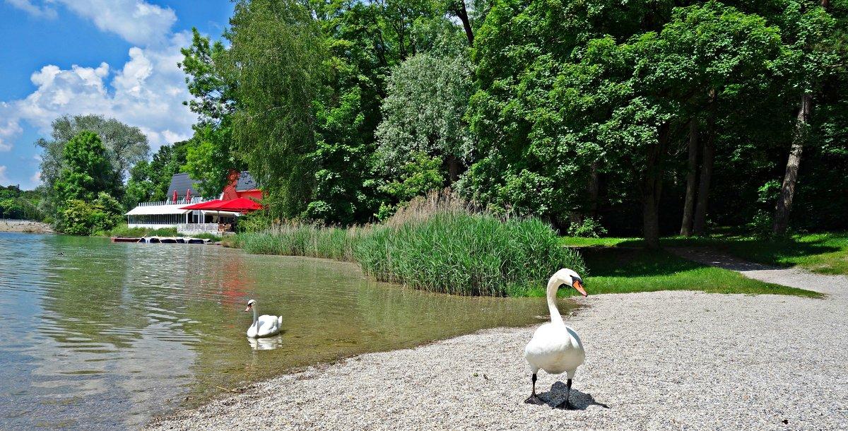 На озере - Galina Dzubina