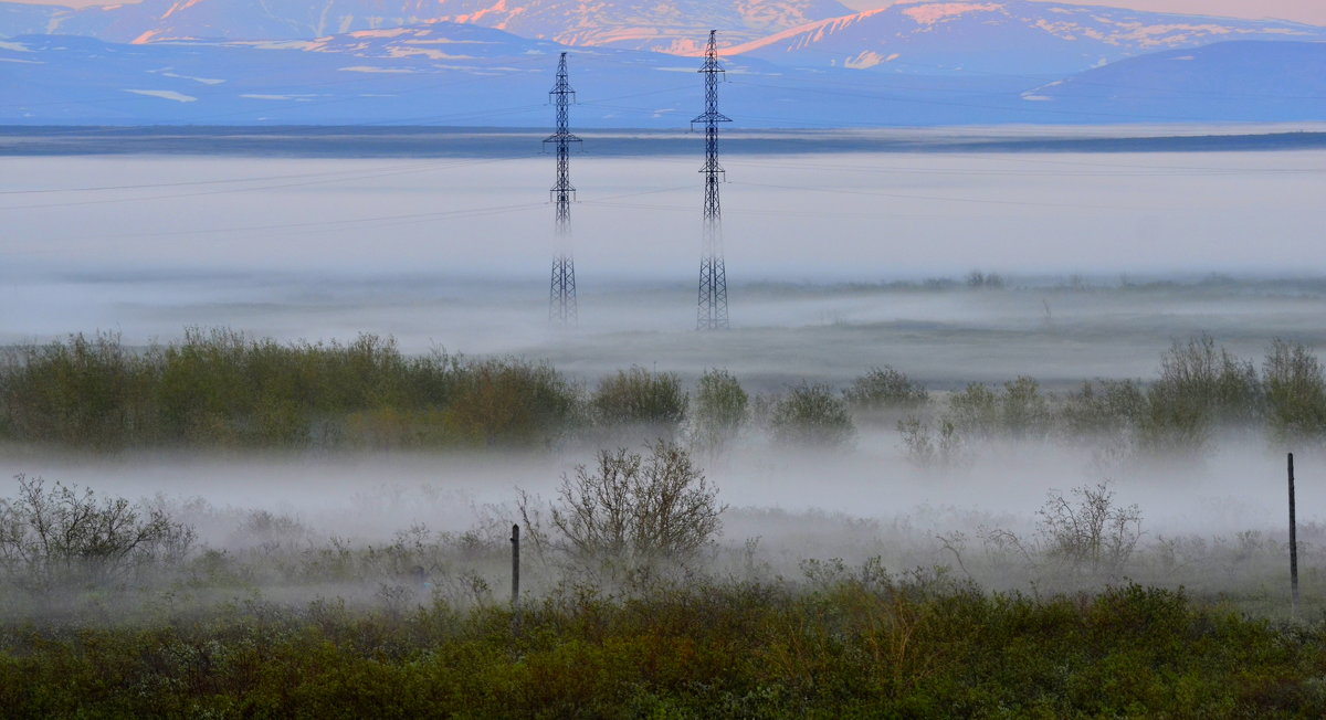 Туман. - Николай Емелин