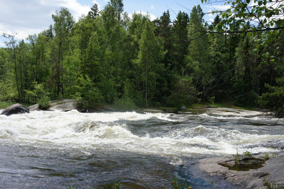 Лангинкоски.  Речные пороги реки Кюмийоки - Елена Павлова (Смолова)