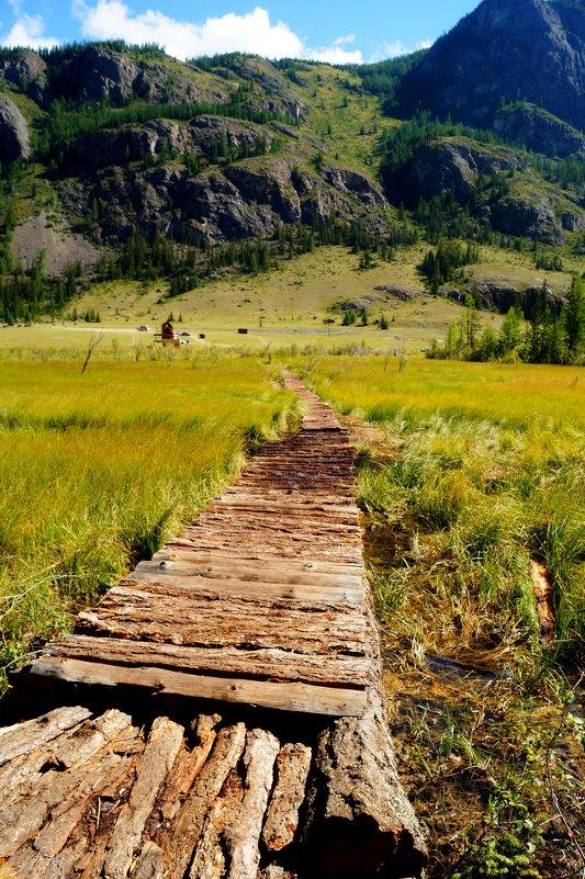 Мост на Гейзеровое озеро. Республика Алтай - Кристина Воробьева