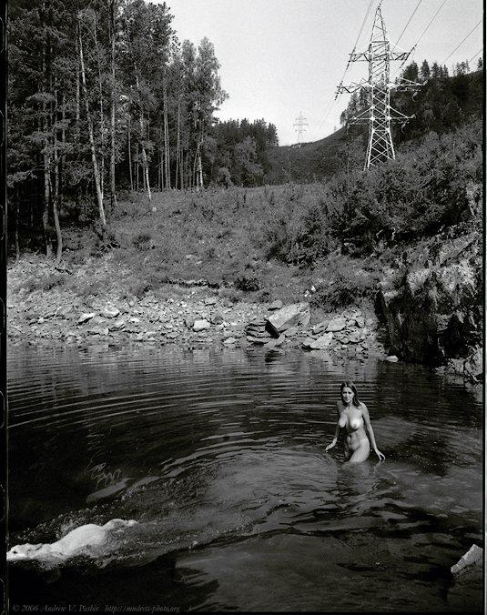 Девушка, Пересекающая с Собакой Границу Кадра - Андрей Пашис