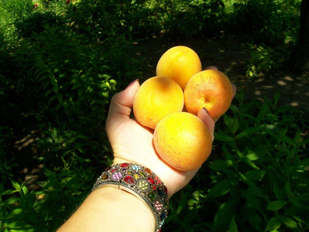 солнечные фрукты на ладони - Галина Pavel