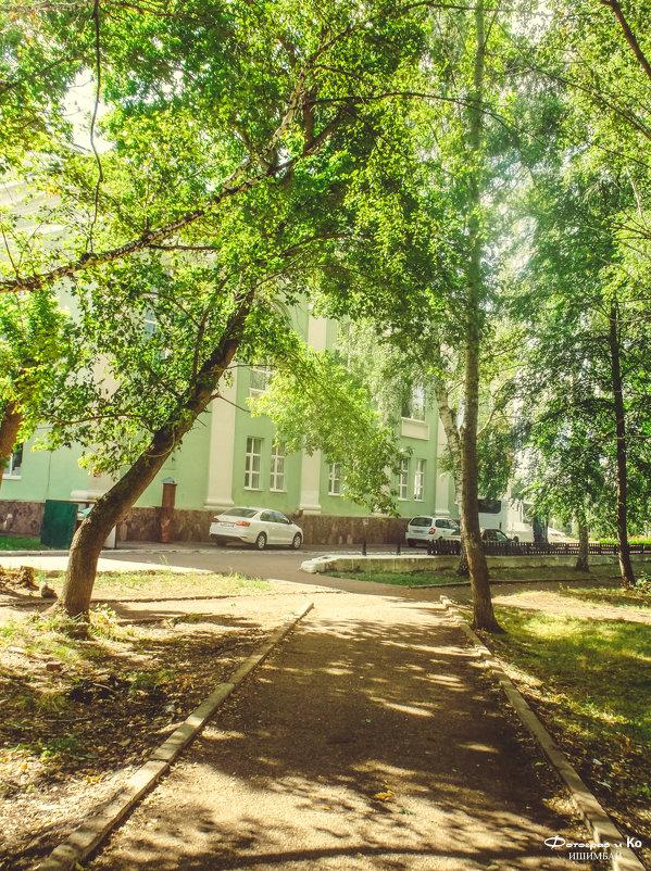 Лето в сквере - Вячеслав Баширов