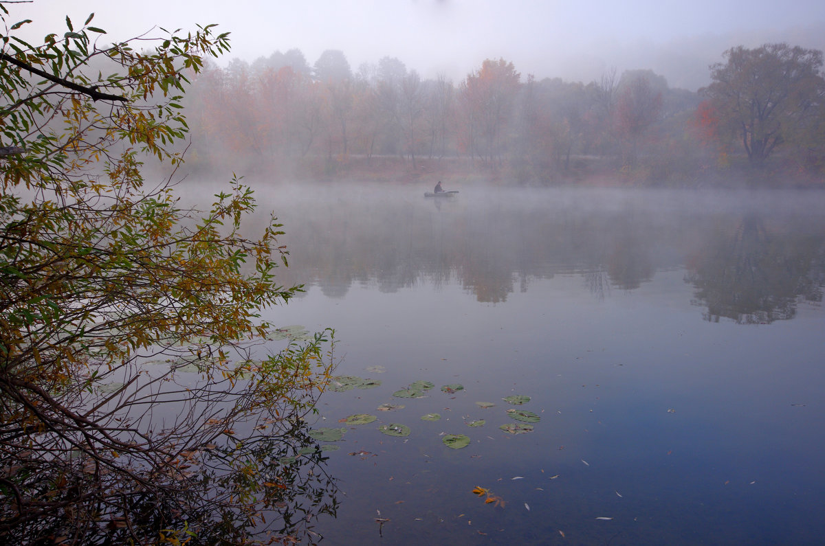 Рыбалка в тумане - Дубовцев Евгений
