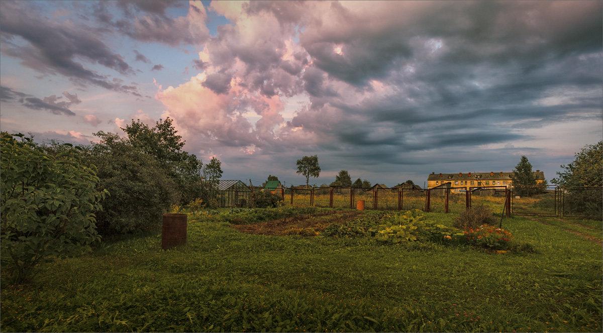 Август, время собирать... урожай... - Александр Никитинский