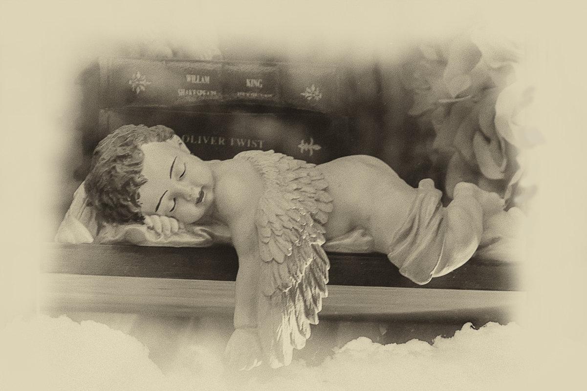 Спящий ангел - Вера Лучникова