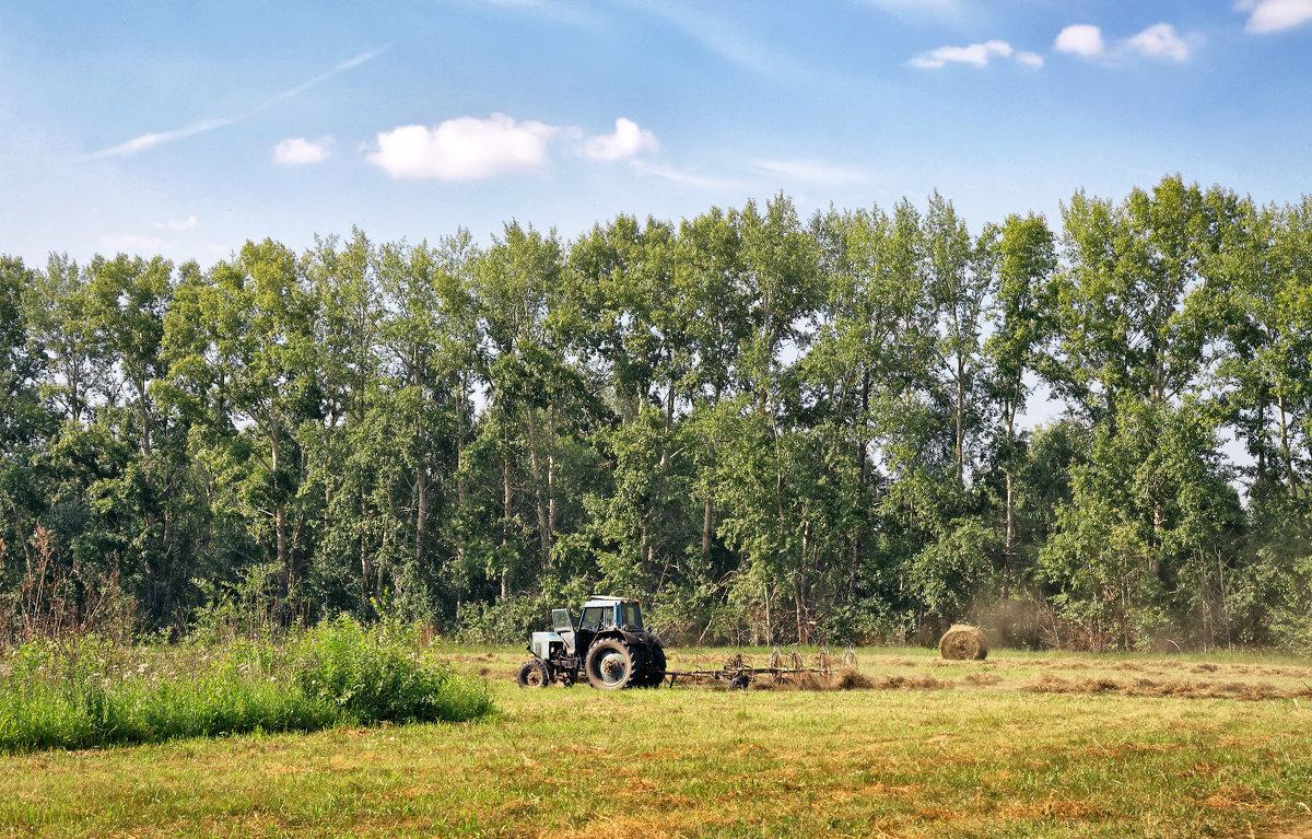 Сельская жизнь - Дмитрий Конев