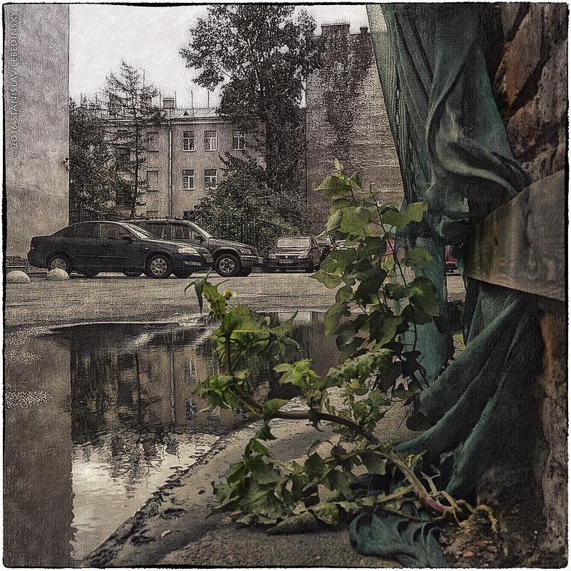 My magic Petersburg_02101 - Станислав Лебединский