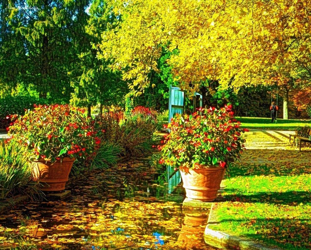 Осень тихой поступью приходит, золото повсюду рассыпает... - Nina Yudicheva