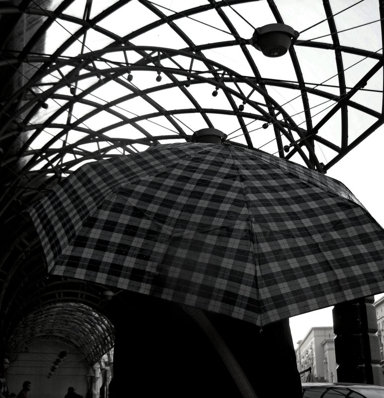 клетчатый зонт - Ольга Заметалова