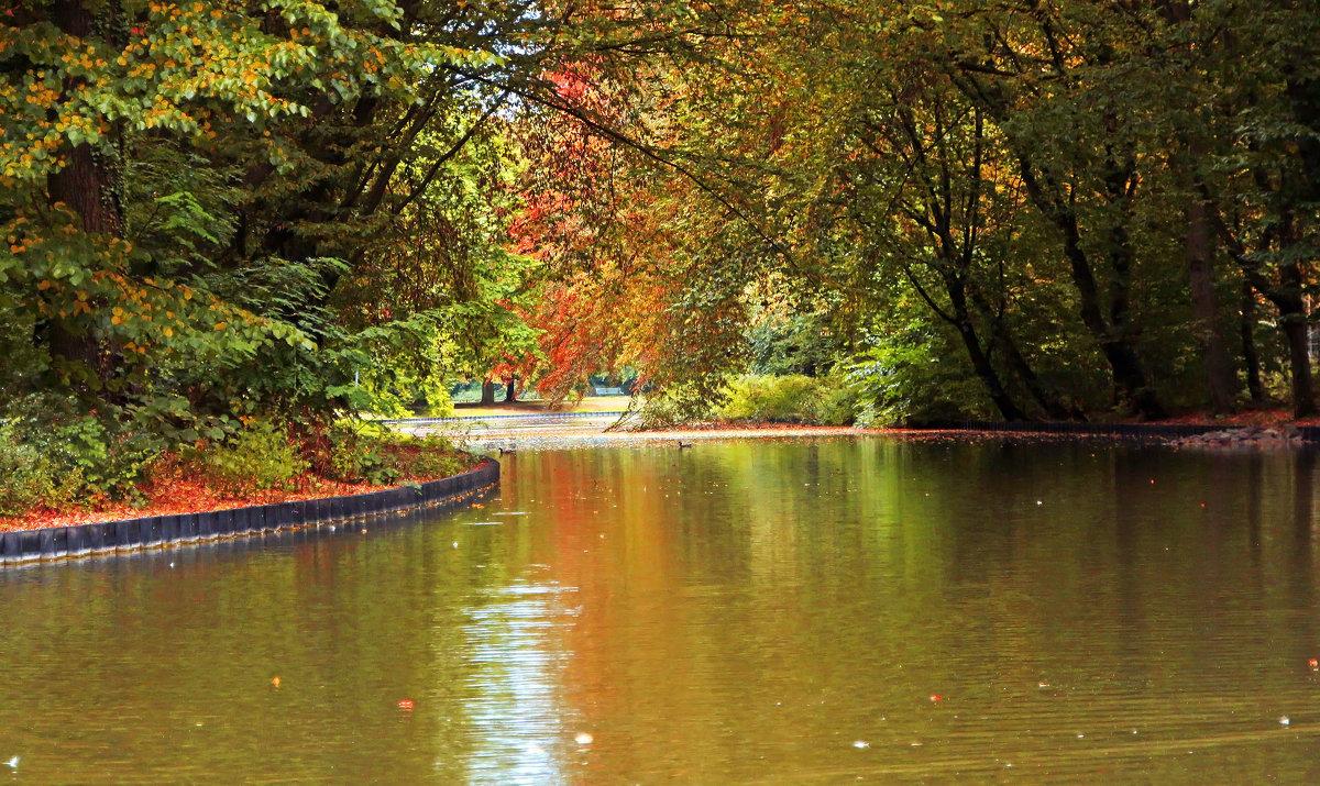 Осени пряди над каналом - Alexander