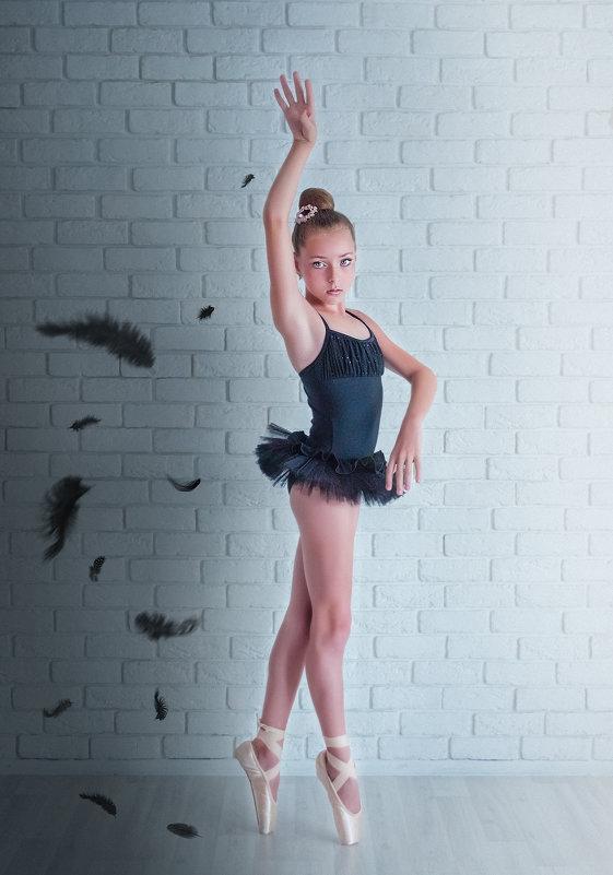 Одиллия. Черный лебедь (балансируя между светом и тенью). - Ольга Егорова