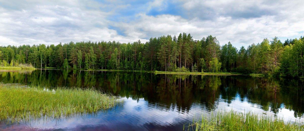 Лесное озеро - Руслан Веселов