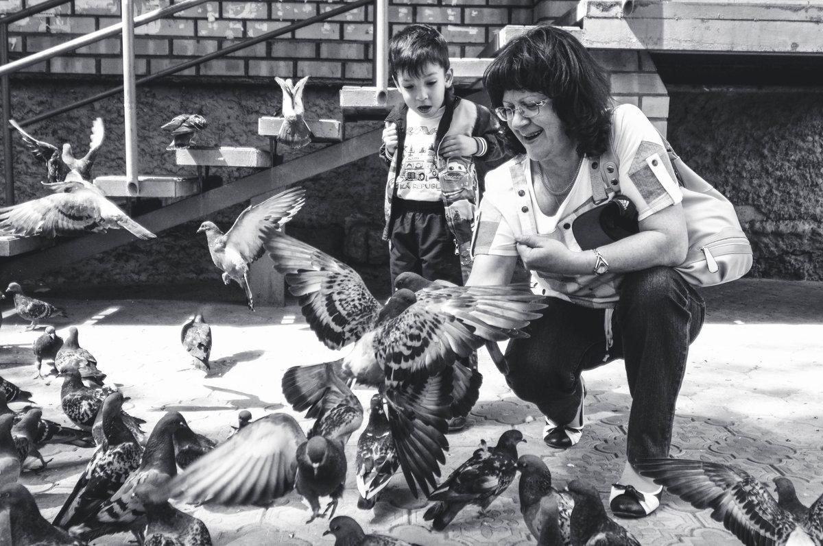 Беспощадное нападение голубей - Я Сурико