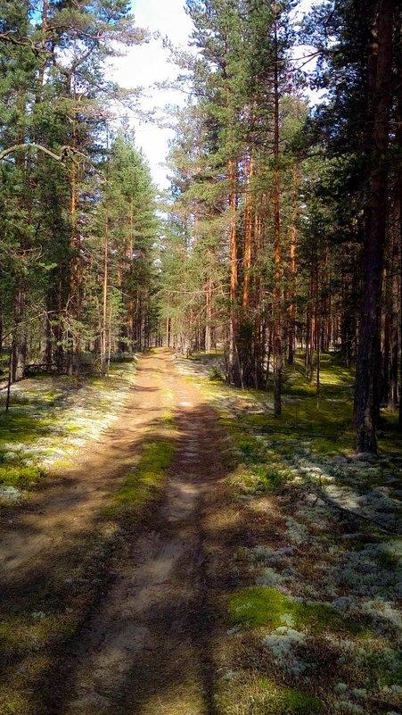 Последний день лета... - Евгения Кирильченко
