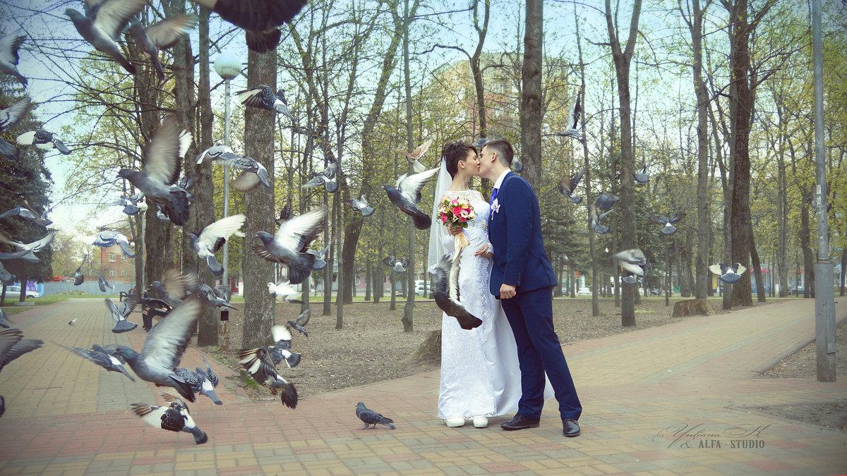 Любовь и голуби - Юлиана Филипцева