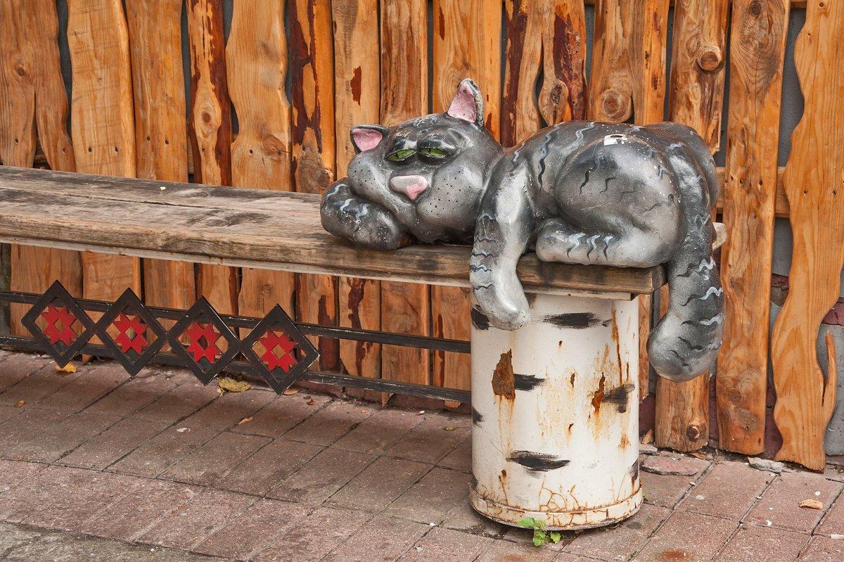 Кошки...кошки... - Ирина Токарева