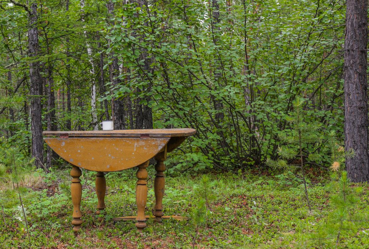 Стол в лесу. - Андрей Шипицын