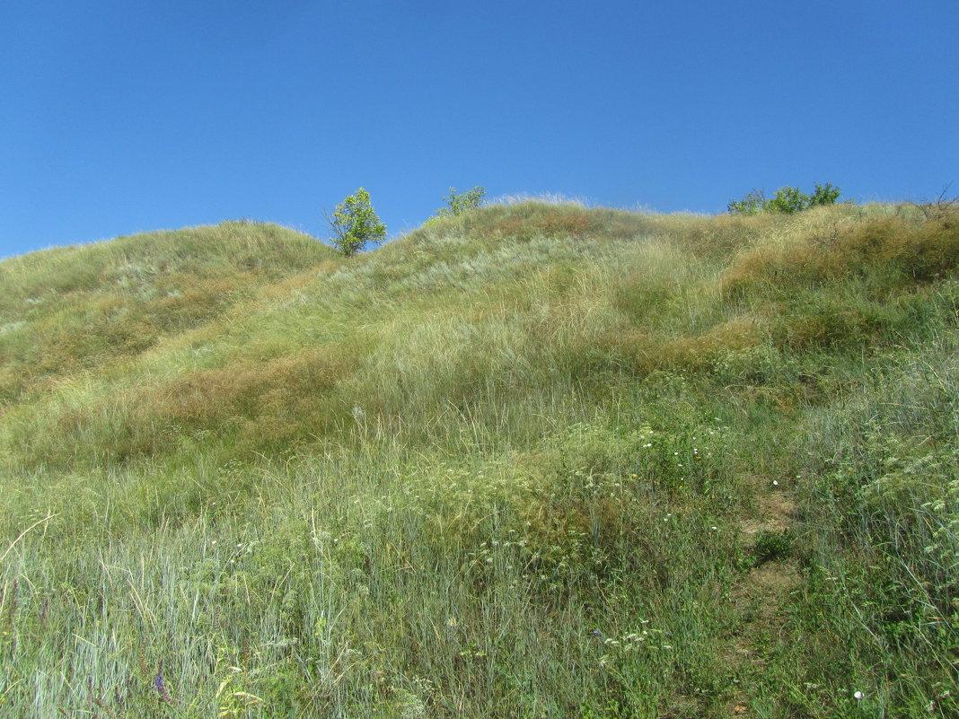 холмы Саратовской области - tgtyjdrf