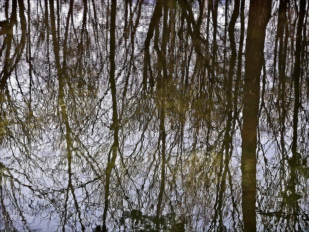 Отражение весны - Валентина *