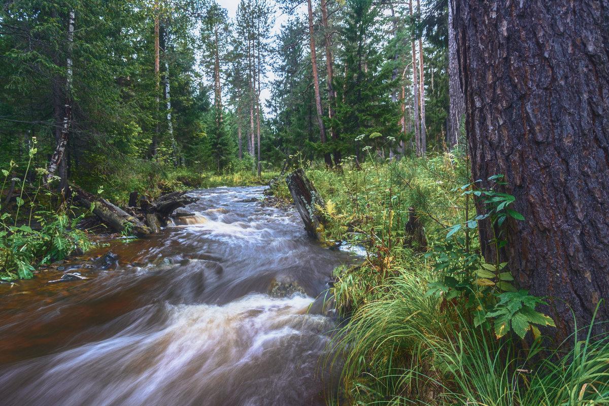 Бурный поток - vladimir Bormotov