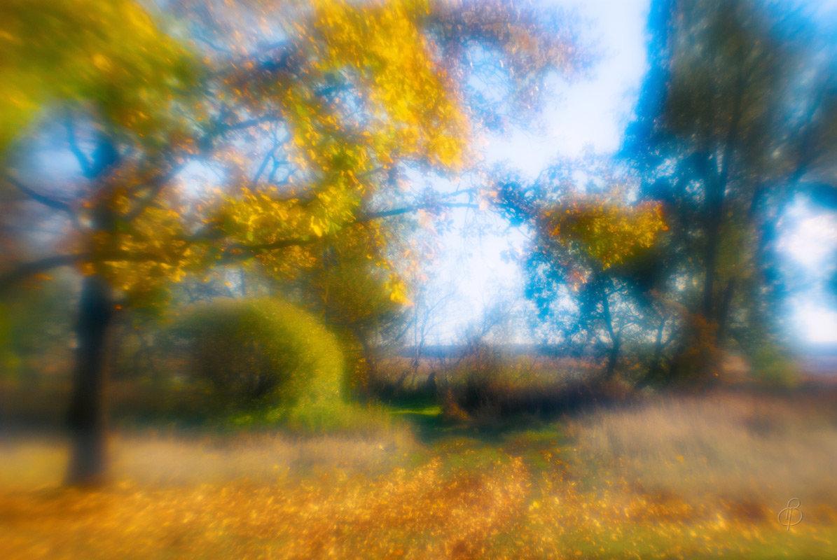 Осенняя фантазия - Виталий