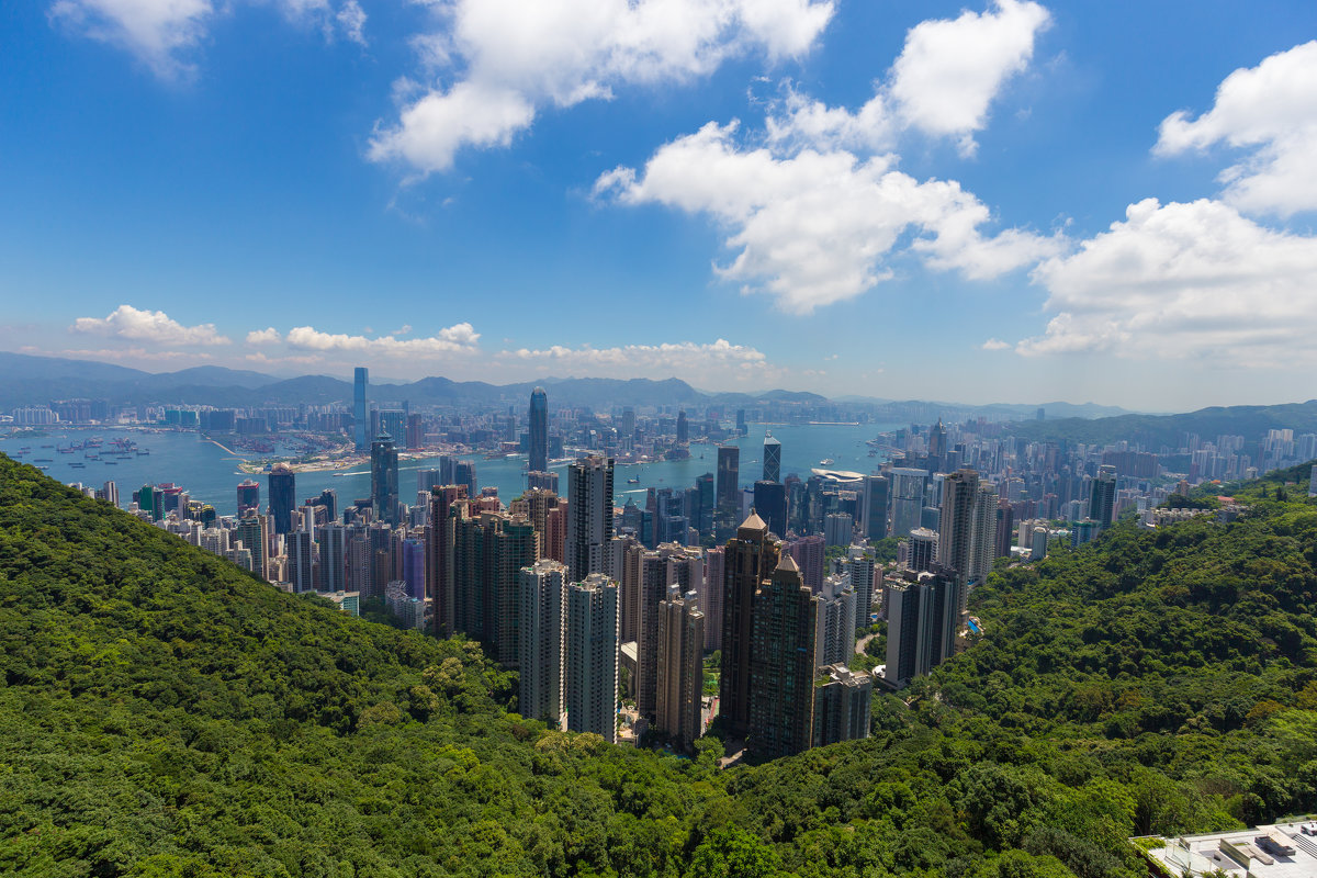 вид на Гонконг - Дмитрий Николаев