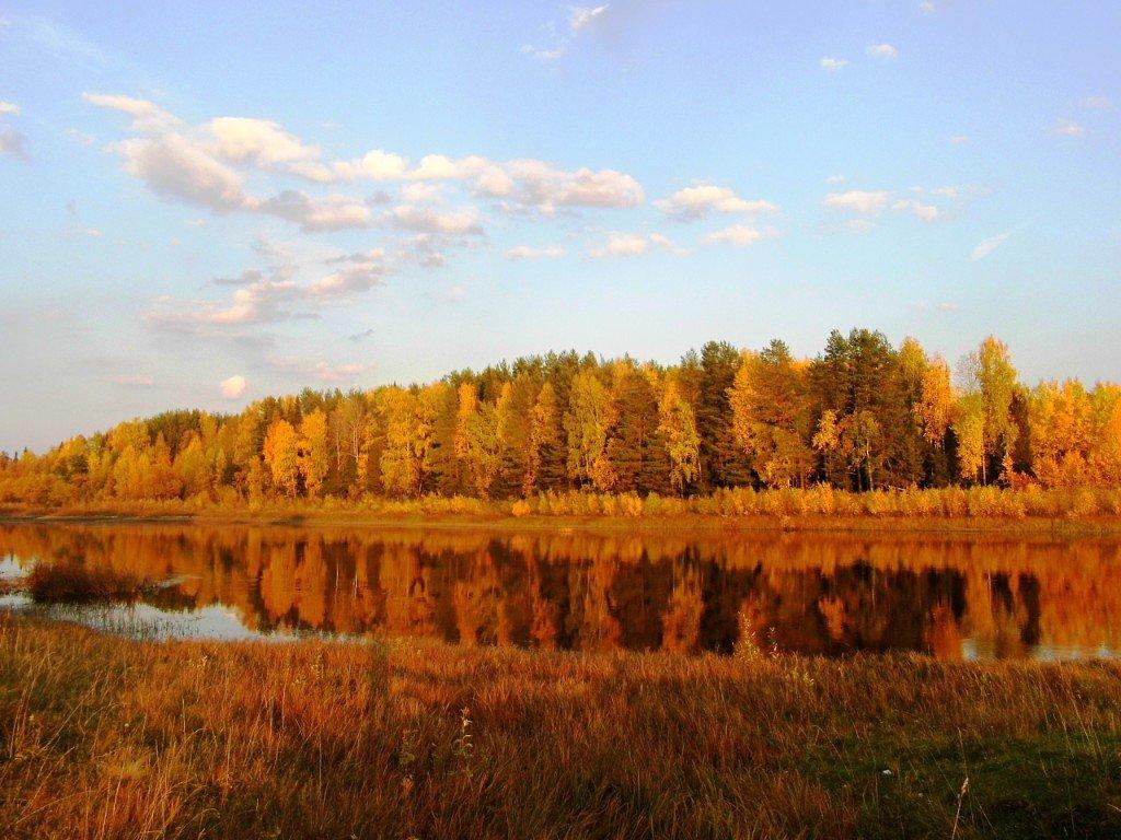 Золотая осень - Ирина Останина