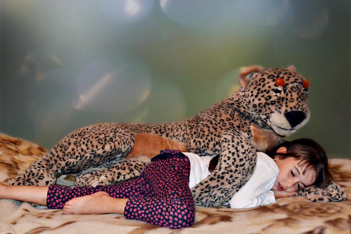 Сон в  надежных лапах.. - Клара