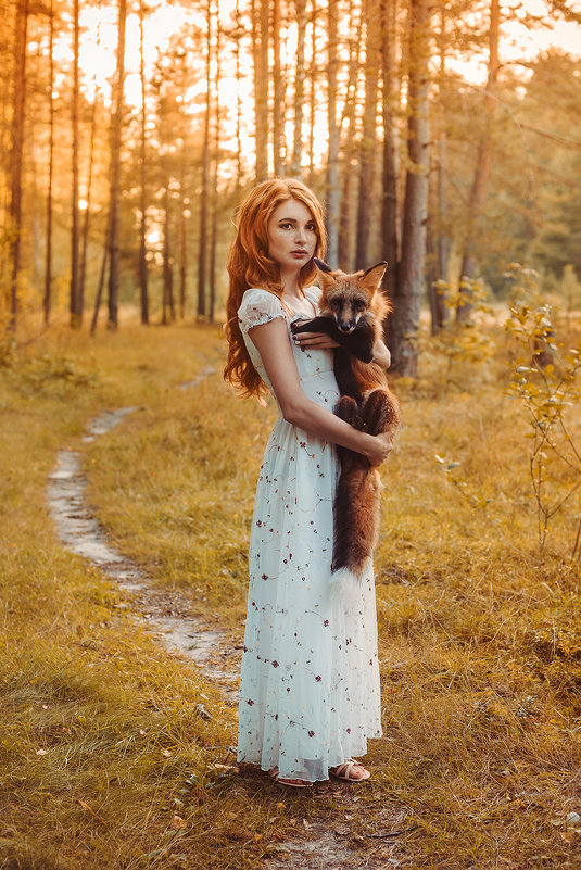 Лисьи сказки - Alice Lain