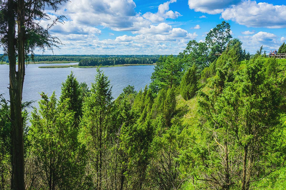 Можжевеловый парк под Каунасом, Литва - Vsevolod Boicenka