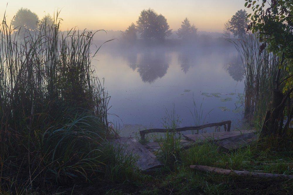 Река в тумане - Сергей Корнев