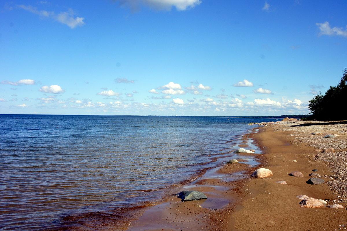 В районе Синимяэ песчаный пляж - Елена Павлова (Смолова)