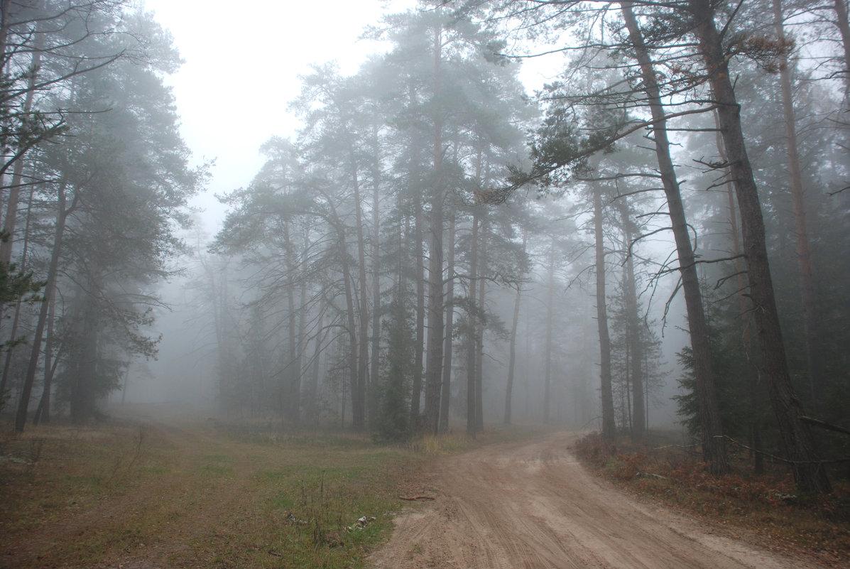 Осенним утром - Валерий Толмачев