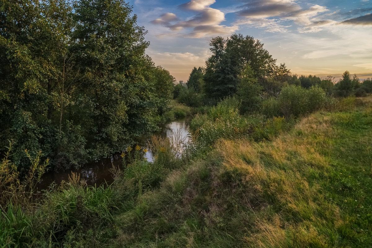 Река Дрезна август 2016 - Андрей Дворников