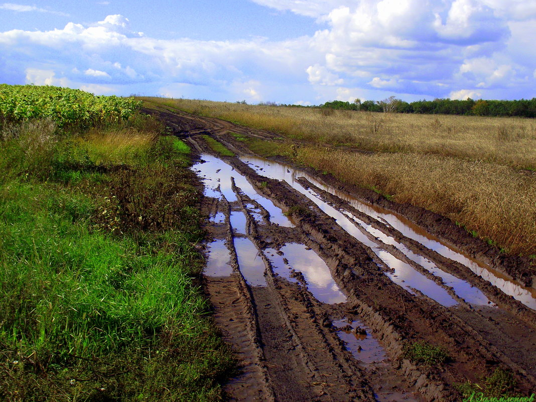 После дождичка в четверг... - Андрей Заломленков