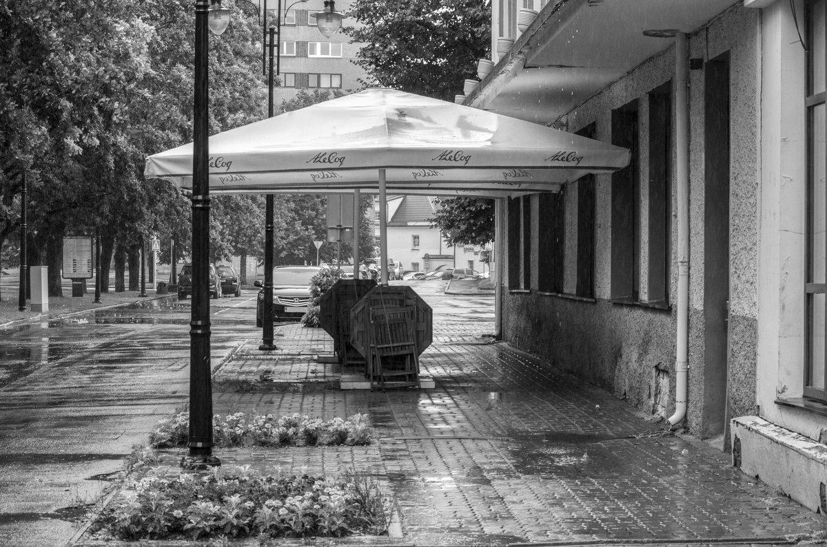 Дождь - shvlad