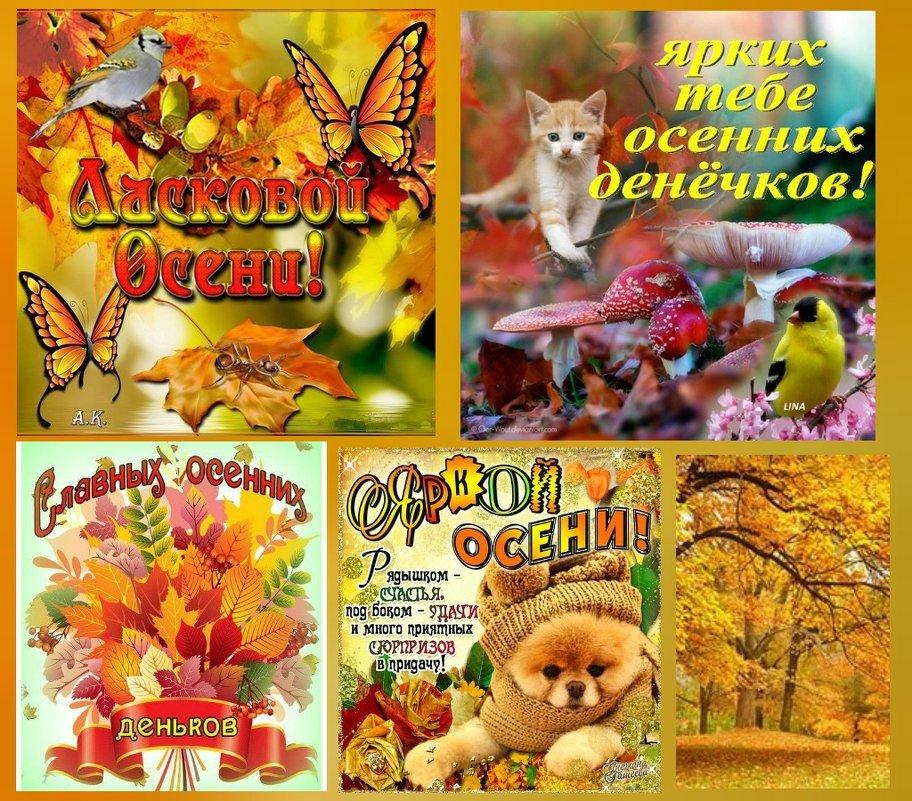 Осень золотая - Lidiy Riga